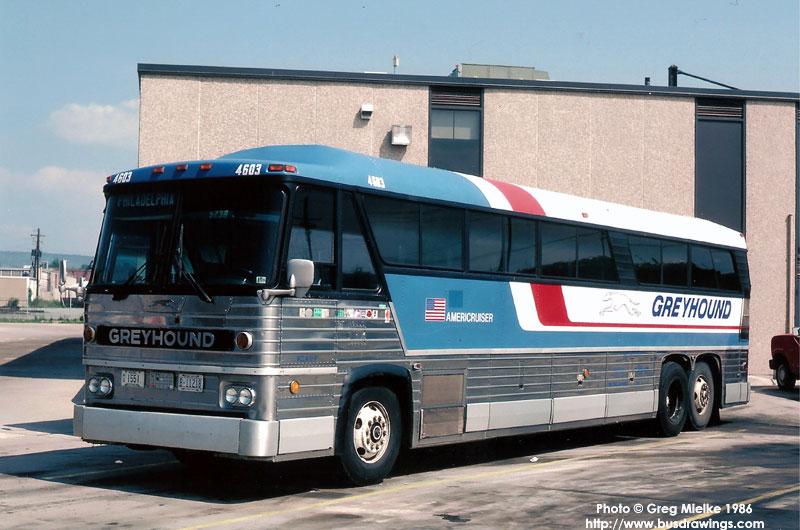 greyhound bus us: